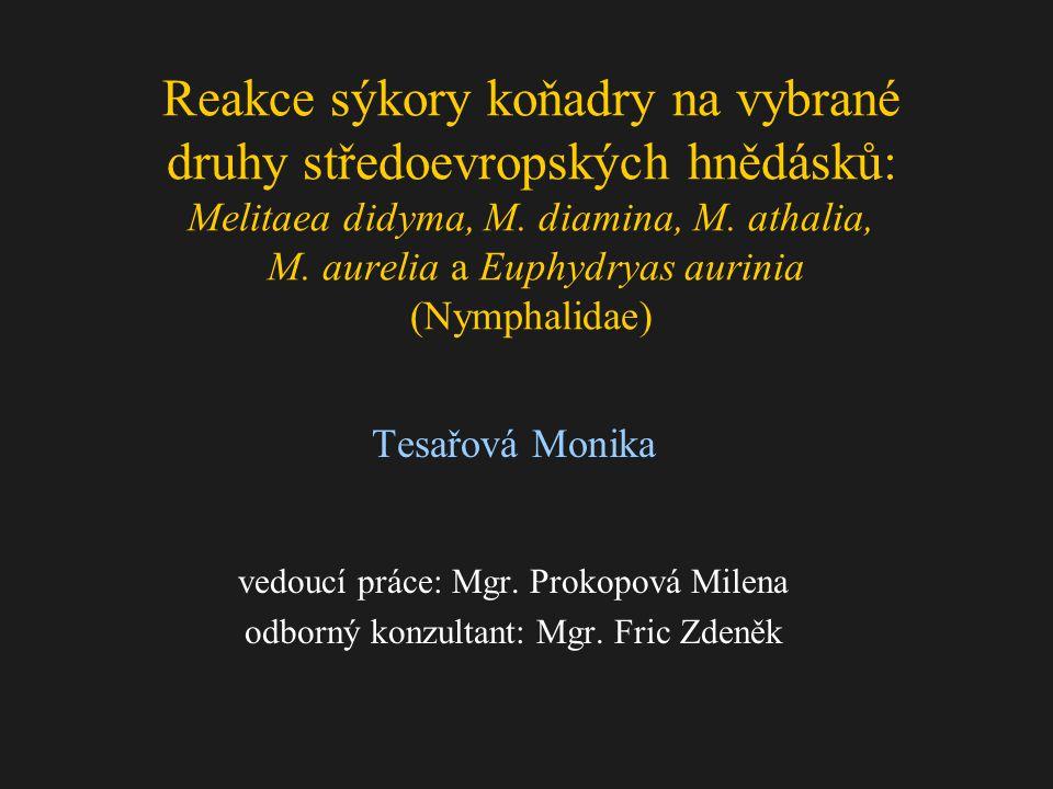 Reakce sýkory koňadry na vybrané druhy středoevropských hnědásků: Melitaea didyma, M. diamina, M. athalia, M. aurelia a Euphydryas aurinia (Nymphalidae)