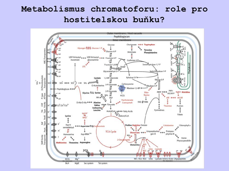 Metabolismus chromatoforu: role pro hostitelskou buňku