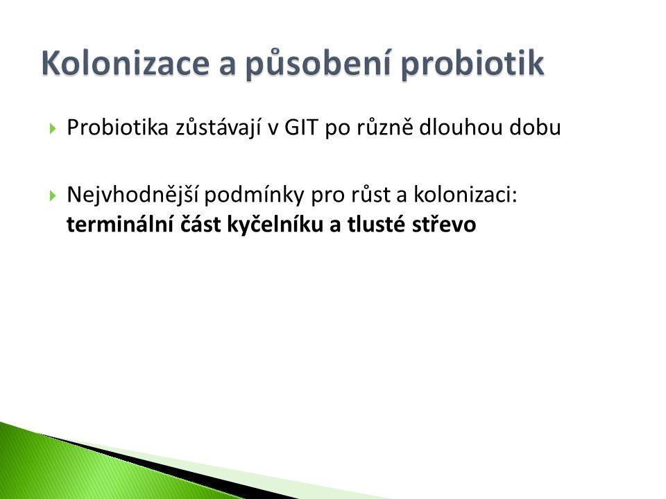 Kolonizace a působení probiotik