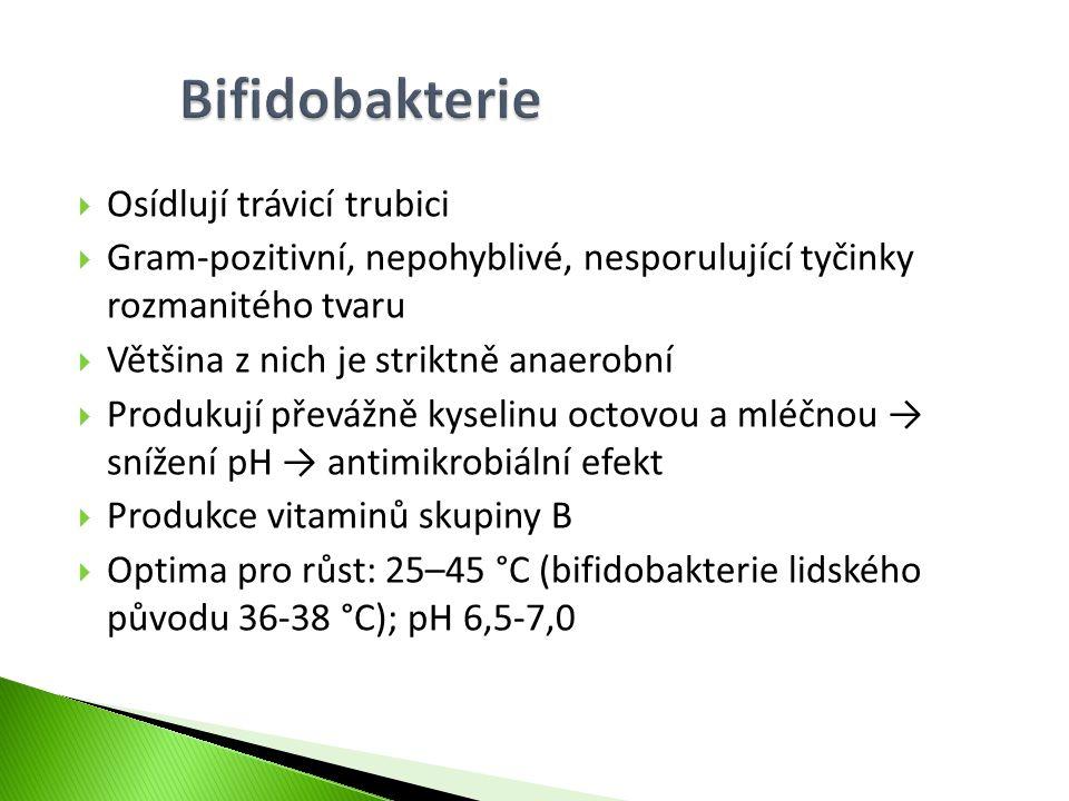 Bifidobakterie Osídlují trávicí trubici