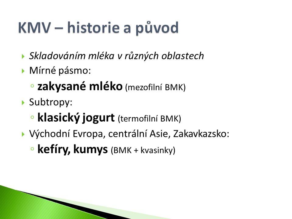 KMV – historie a původ zakysané mléko (mezofilní BMK)