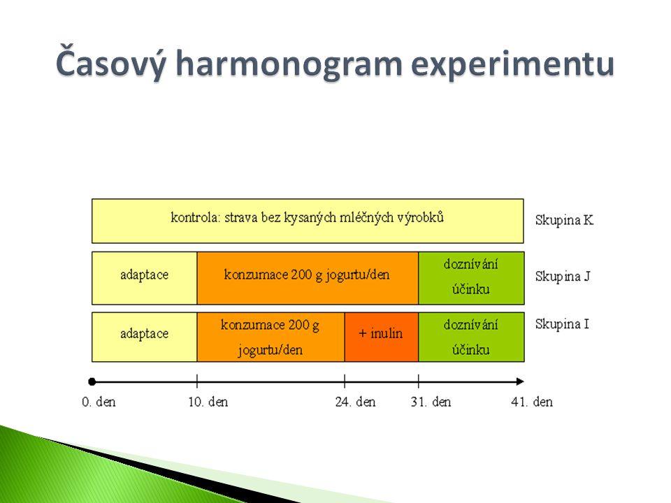 Časový harmonogram experimentu
