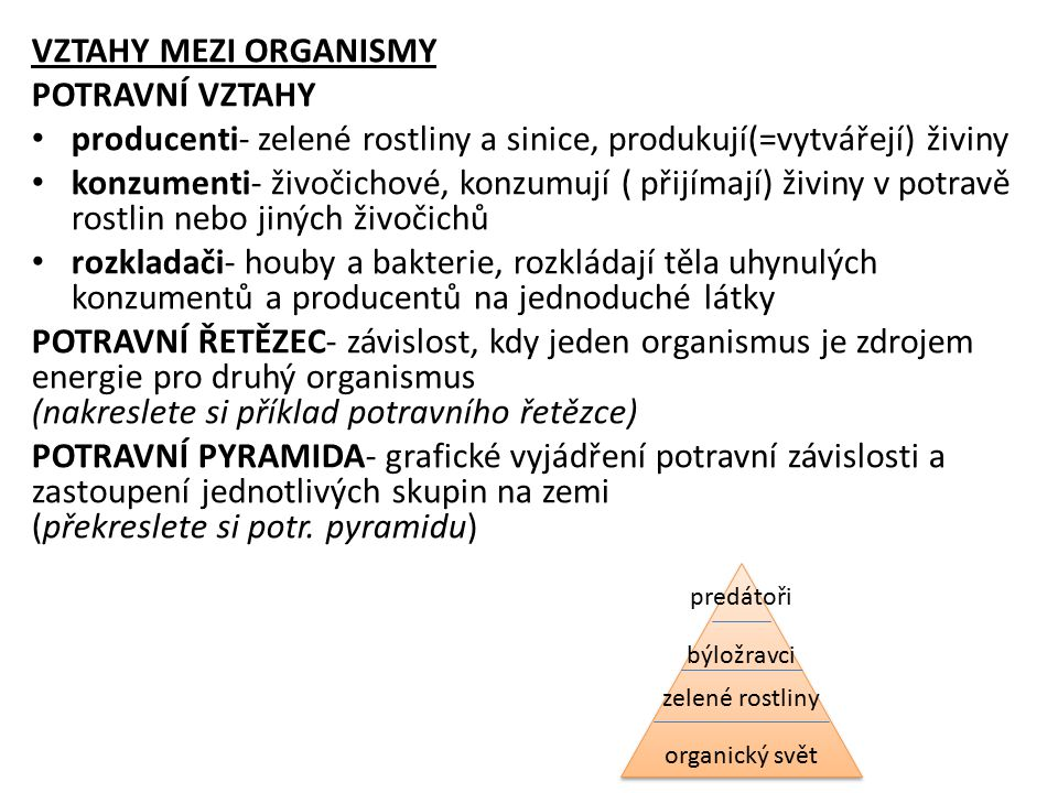 producenti- zelené rostliny a sinice, produkují(=vytvářejí) živiny