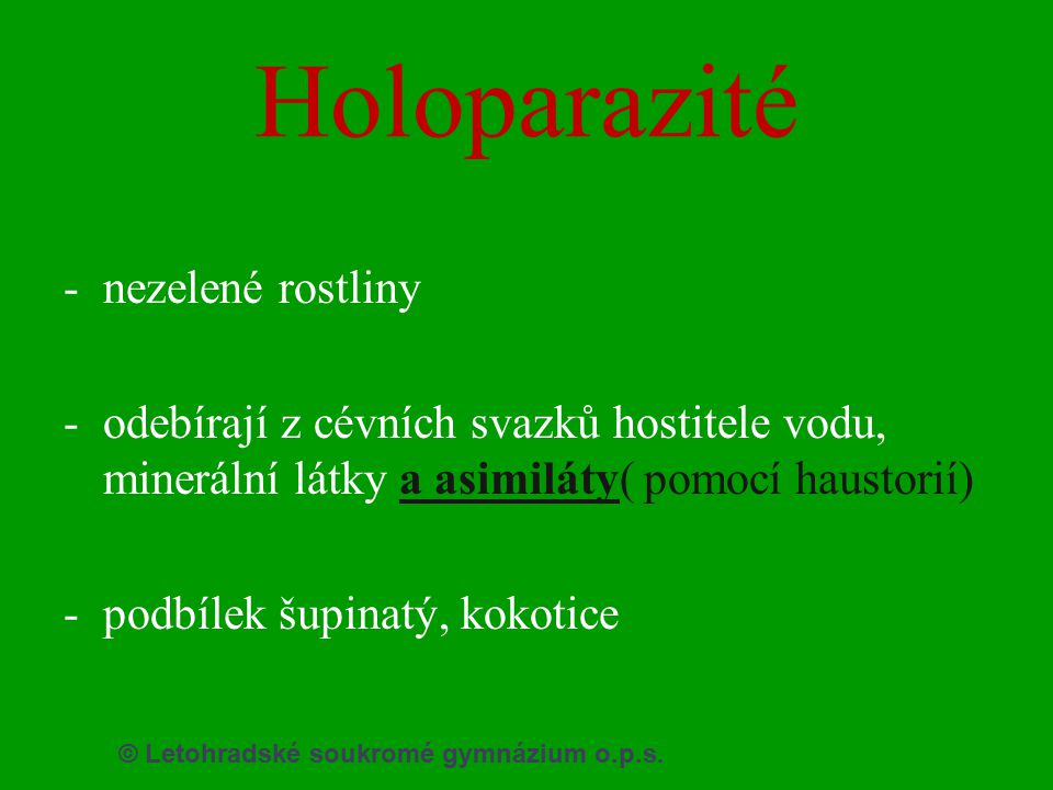 Holoparazité nezelené rostliny