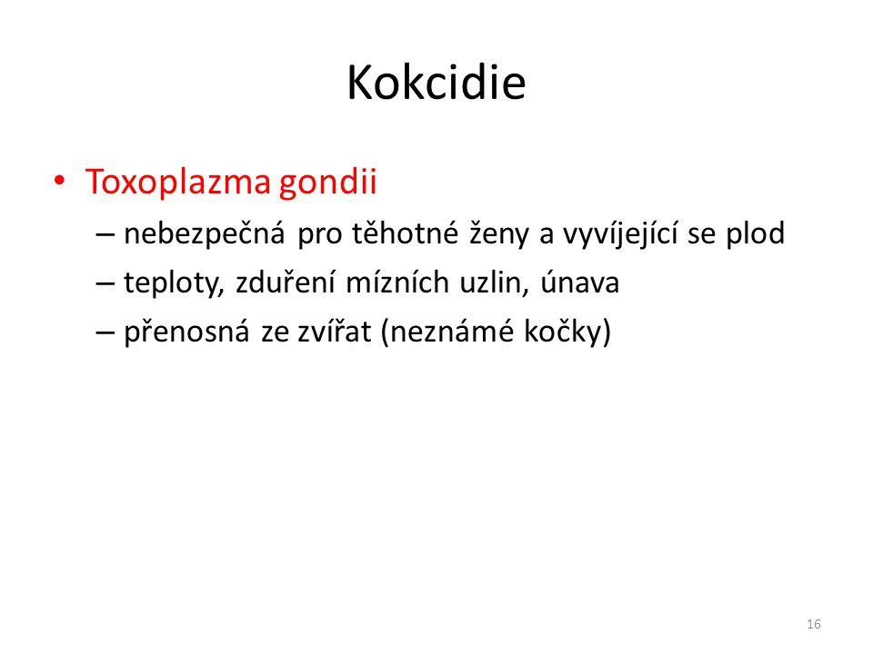 Kokcidie Toxoplazma gondii