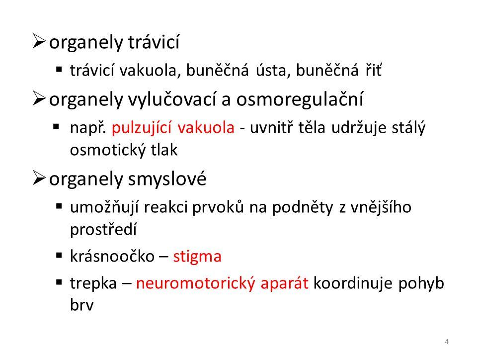organely vylučovací a osmoregulační