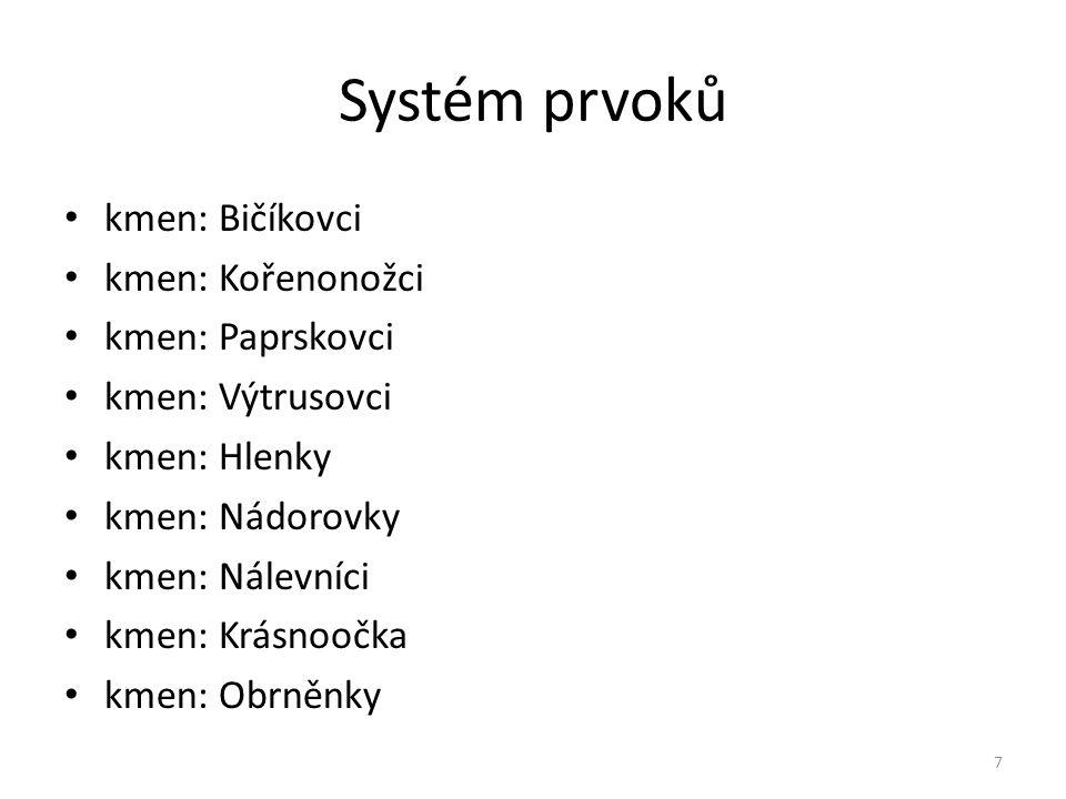 Systém prvoků kmen: Bičíkovci kmen: Kořenonožci kmen: Paprskovci