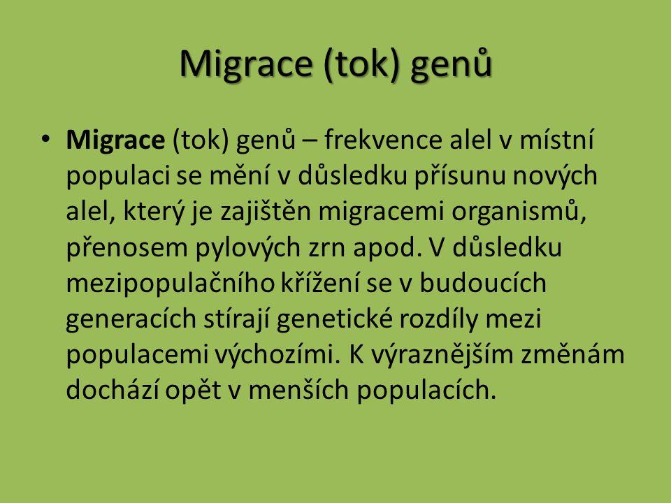 Migrace (tok) genů
