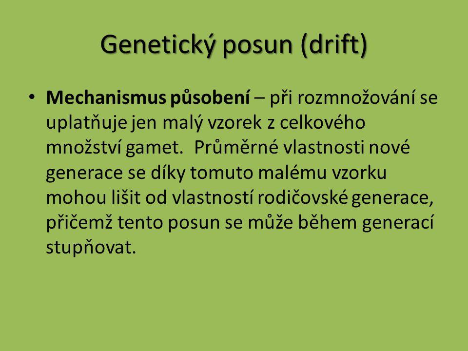Genetický posun (drift)
