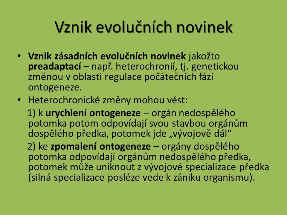 Vznik evolučních novinek