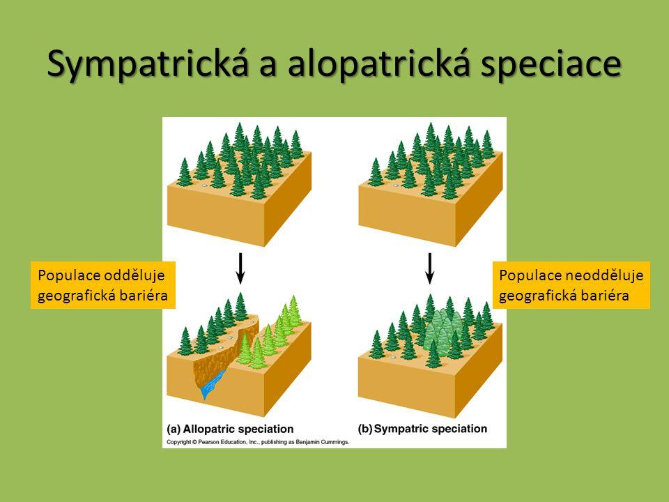 Sympatrická a alopatrická speciace