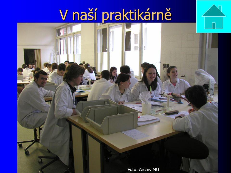 V naší praktikárně Foto: Archiv MU