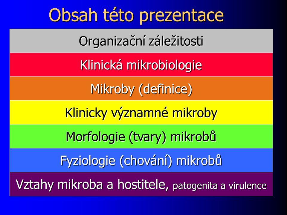 Obsah této prezentace Organizační záležitosti Klinická mikrobiologie