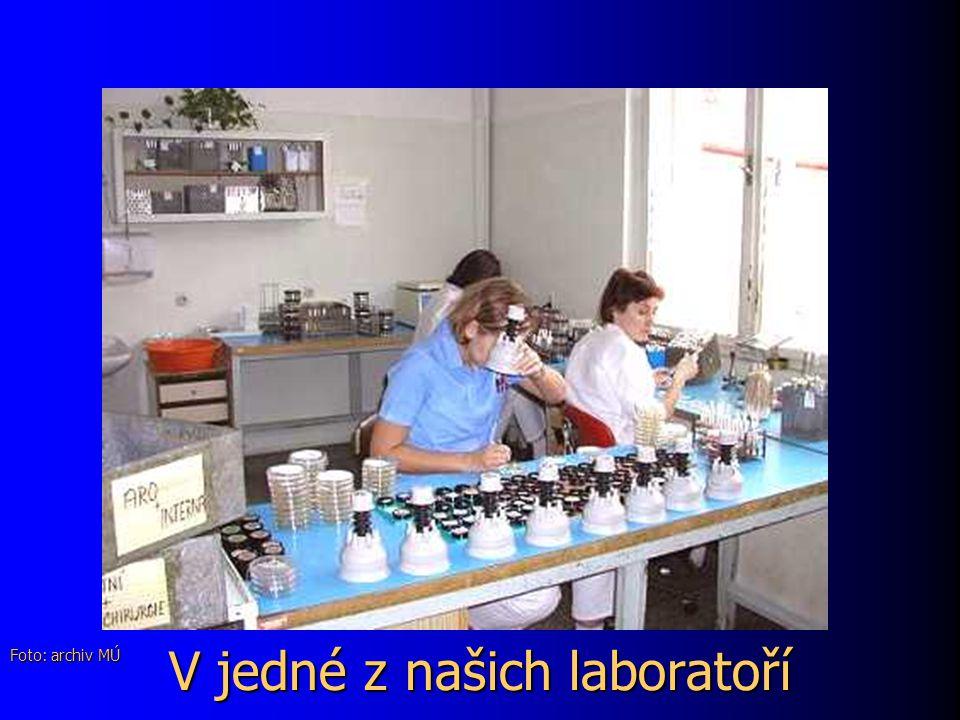 V jedné z našich laboratoří