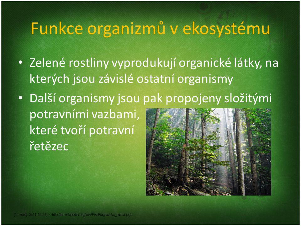 Funkce organizmů v ekosystému