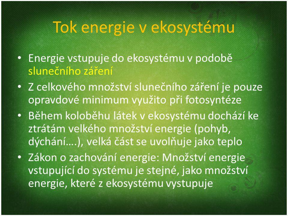 Tok energie v ekosystému