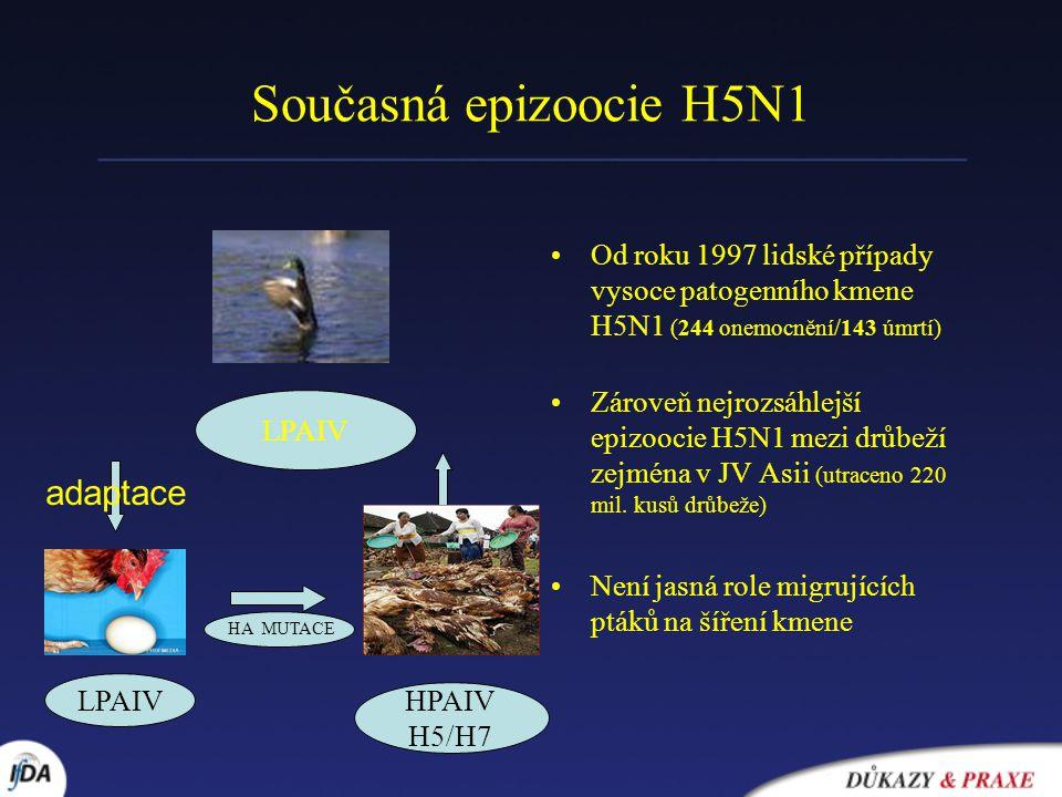 Současná epizoocie H5N1 adaptace