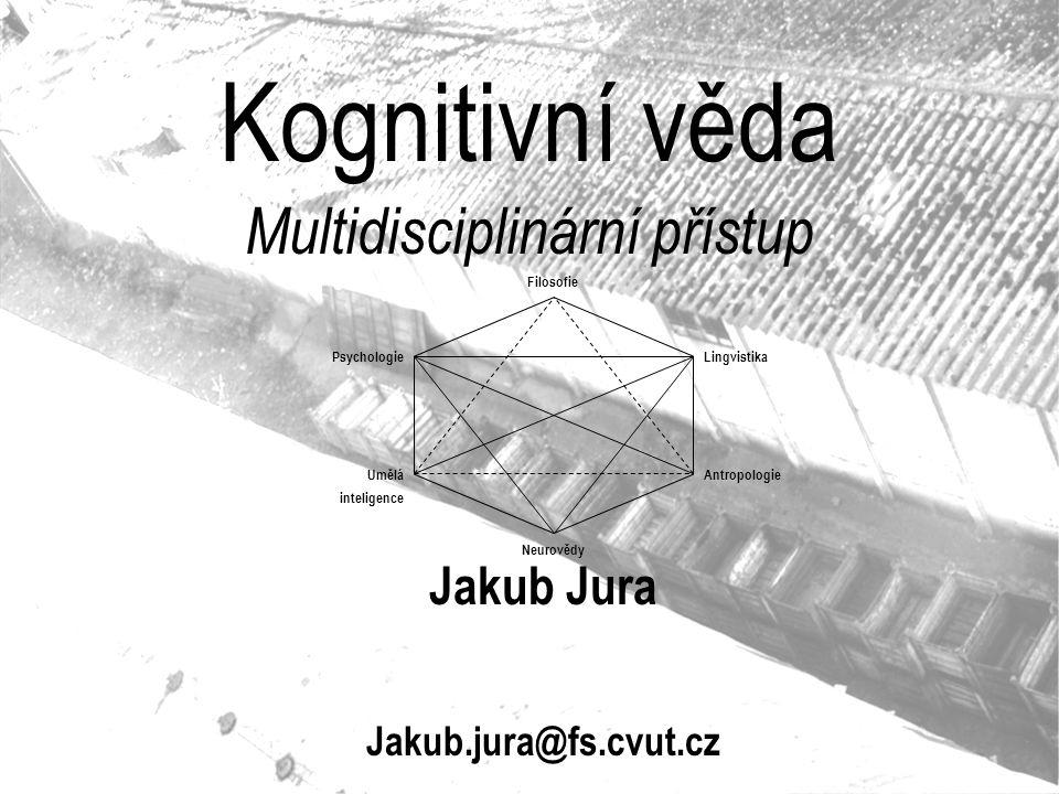 Multidisciplinární přístup