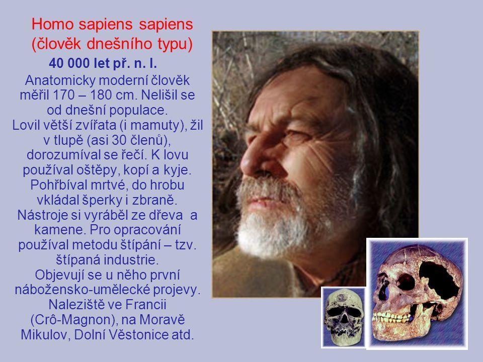 Homo sapiens sapiens (člověk dnešního typu) 40 000 let př. n. l.