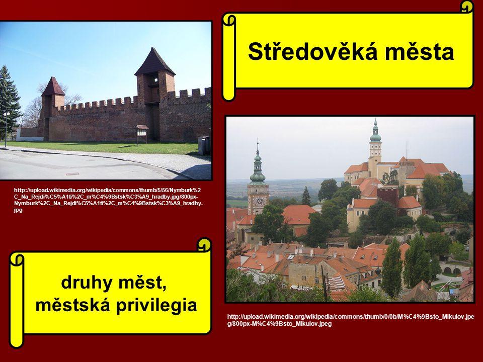Středověká města druhy měst, městská privilegia