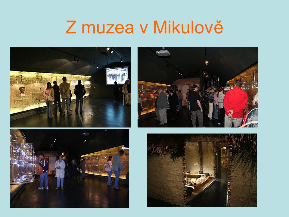 Z muzea v Mikulově