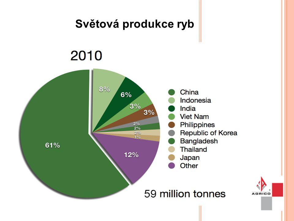 Světová produkce ryb