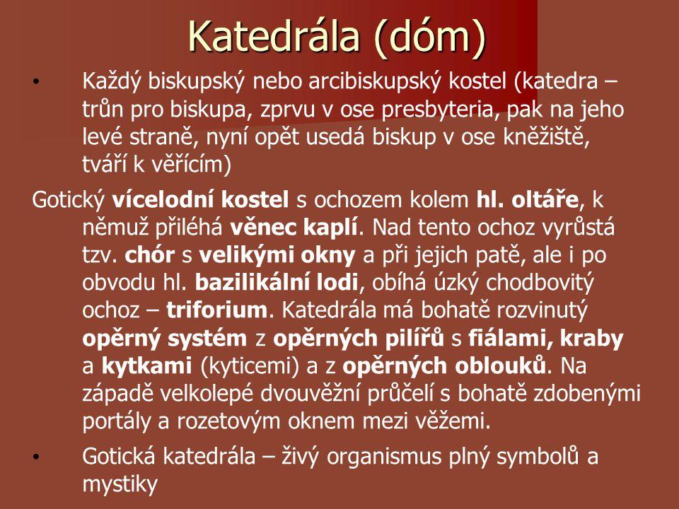 Katedrála (dóm)