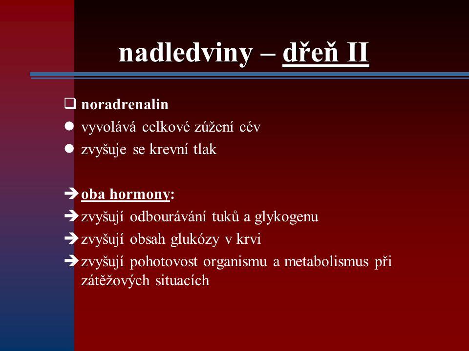 nadledviny – dřeň II noradrenalin vyvolává celkové zúžení cév