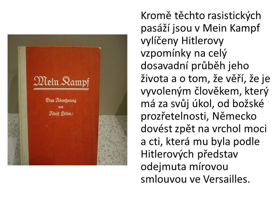 Kromě těchto rasistických pasáží jsou v Mein Kampf vylíčeny Hitlerovy vzpomínky na celý dosavadní průběh jeho života a o tom, že věří, že je vyvoleným člověkem, který má za svůj úkol, od božské prozřetelnosti, Německo dovést zpět na vrchol moci a cti, která mu byla podle Hitlerových představ odejmuta mírovou smlouvou ve Versailles.