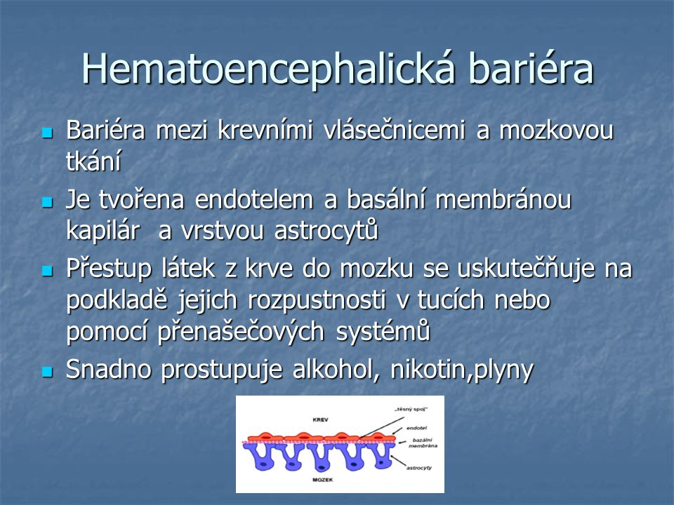 Hematoencephalická bariéra