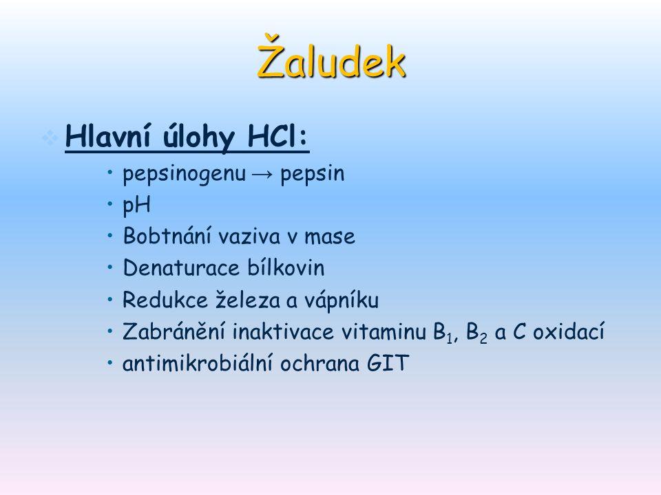Žaludek Hlavní úlohy HCl: pepsinogenu → pepsin pH