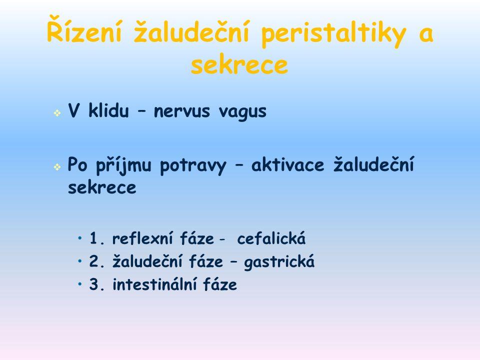 Řízení žaludeční peristaltiky a sekrece
