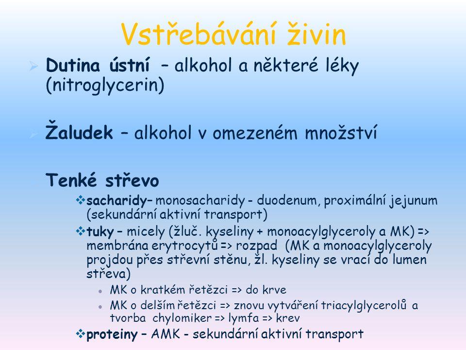 Vstřebávání živin Dutina ústní – alkohol a některé léky (nitroglycerin) Žaludek – alkohol v omezeném množství.