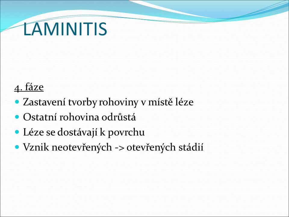 LAMINITIS 4. fáze Zastavení tvorby rohoviny v místě léze