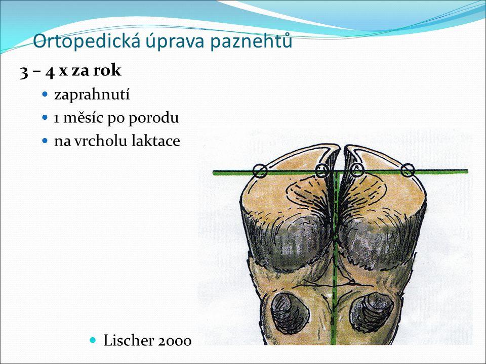 Ortopedická úprava paznehtů