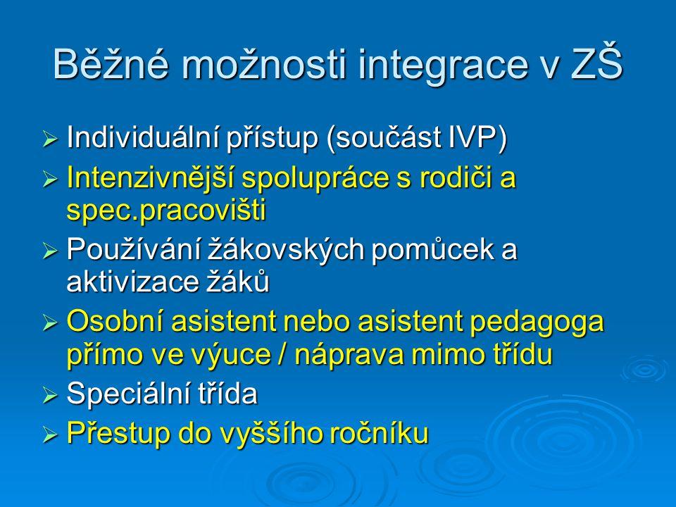 Běžné možnosti integrace v ZŠ