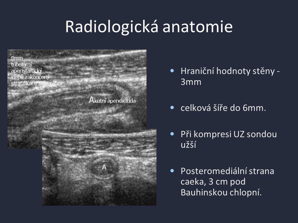 Radiologická anatomie