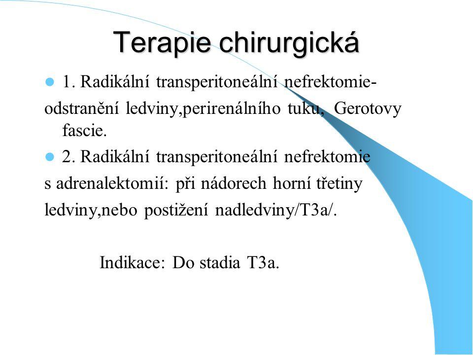 Terapie chirurgická 1. Radikální transperitoneální nefrektomie-