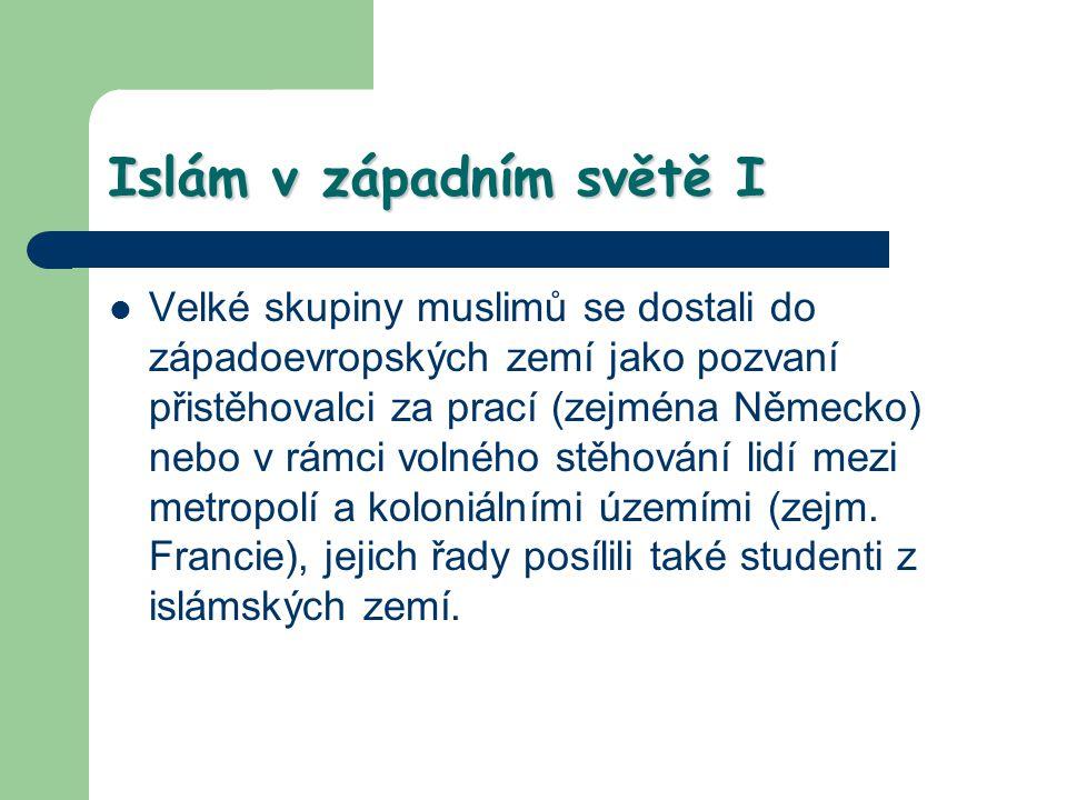 Islám v západním světě I