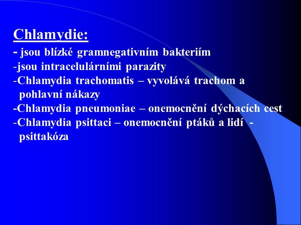 Chlamydie: - jsou blízké gramnegativním bakteriím