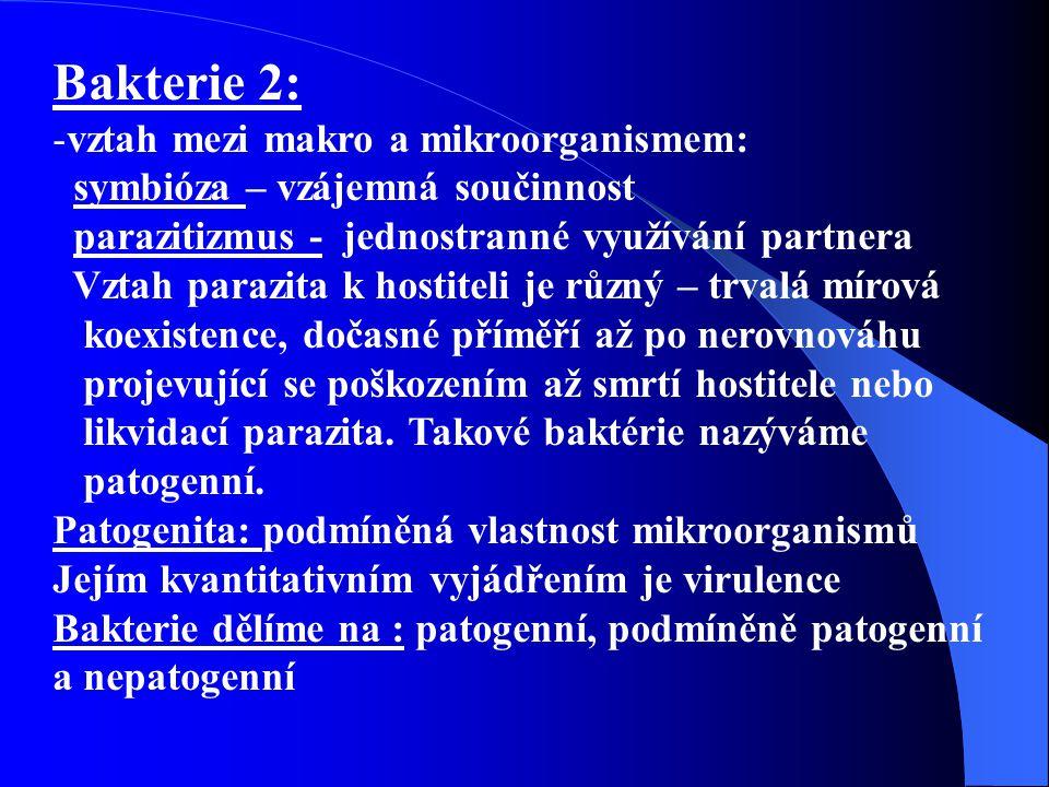 Bakterie 2: vztah mezi makro a mikroorganismem: