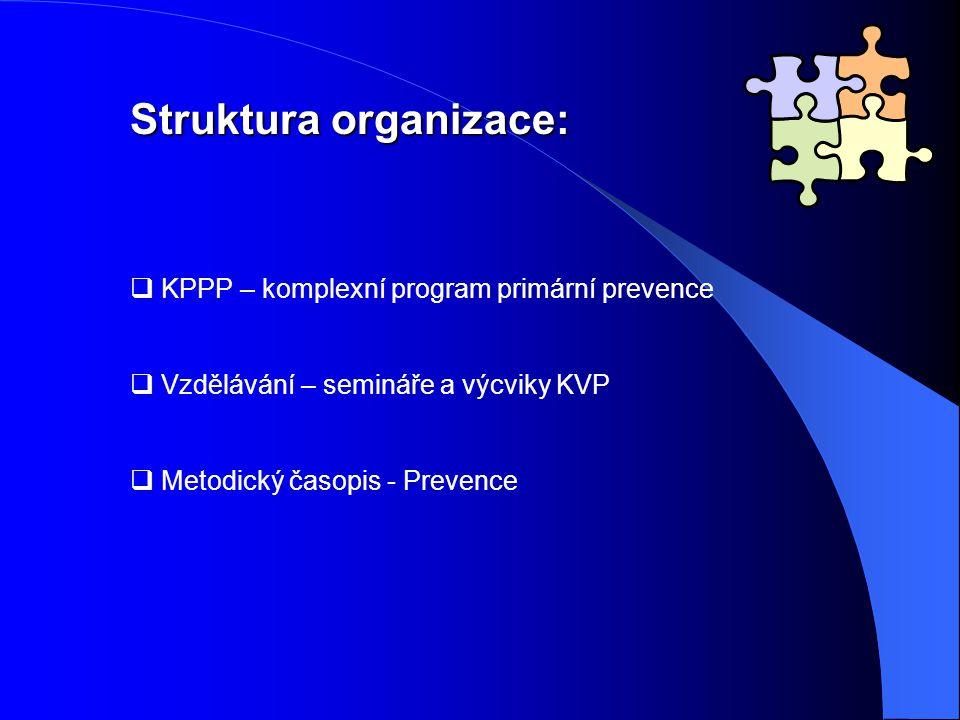 Struktura organizace: