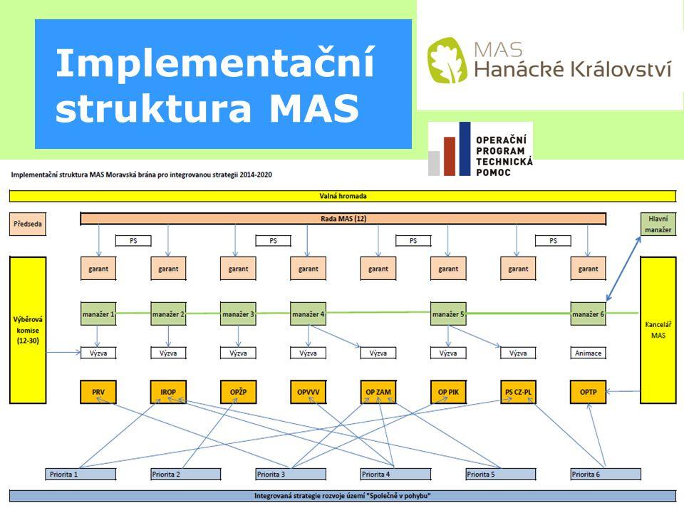 Implementační struktura MAS
