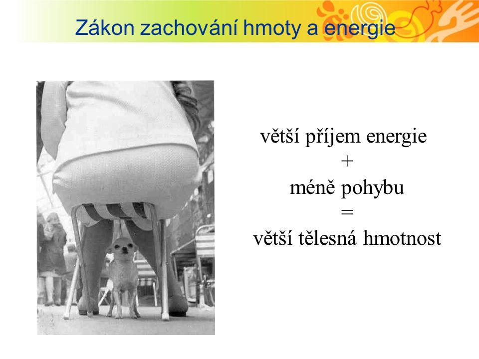 Zákon zachování hmoty a energie
