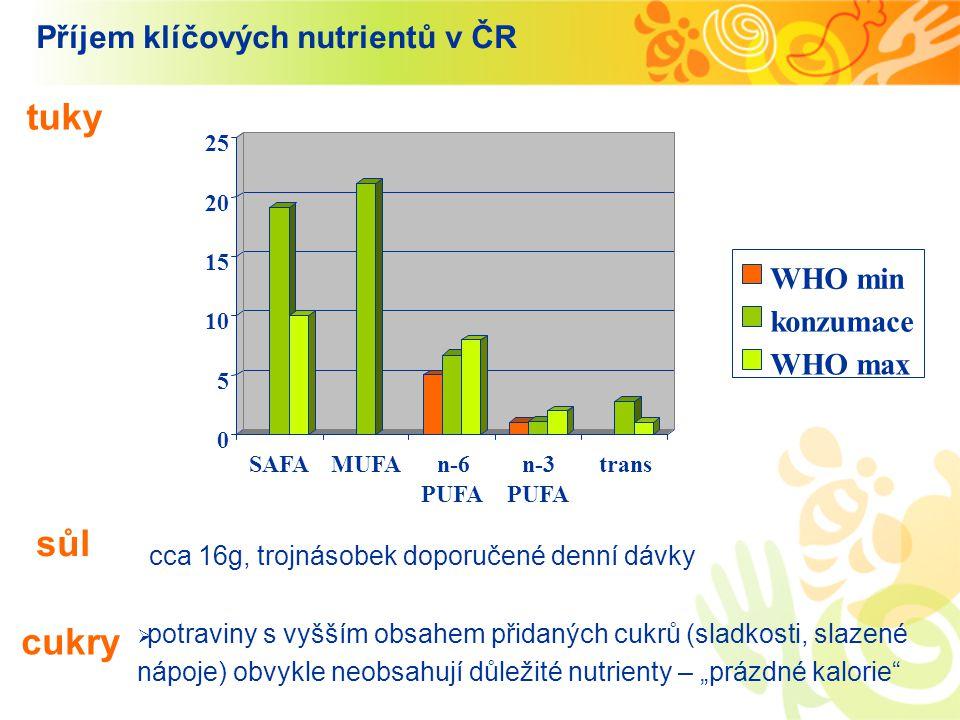 Příjem klíčových nutrientů v ČR