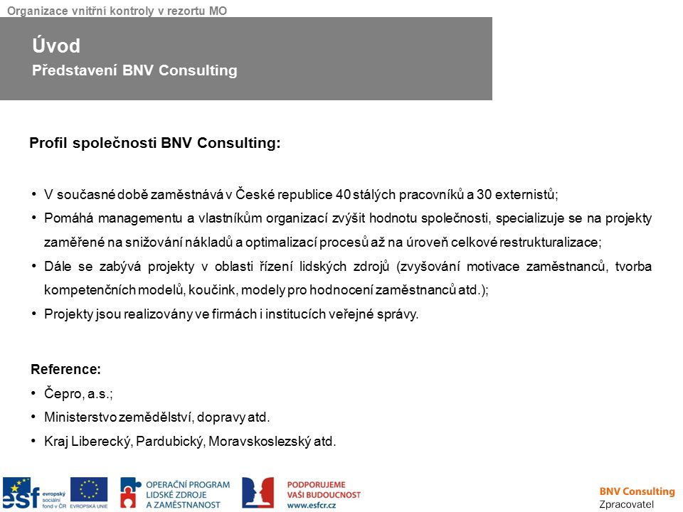 Úvod Představení BNV Consulting Profil společnosti BNV Consulting: