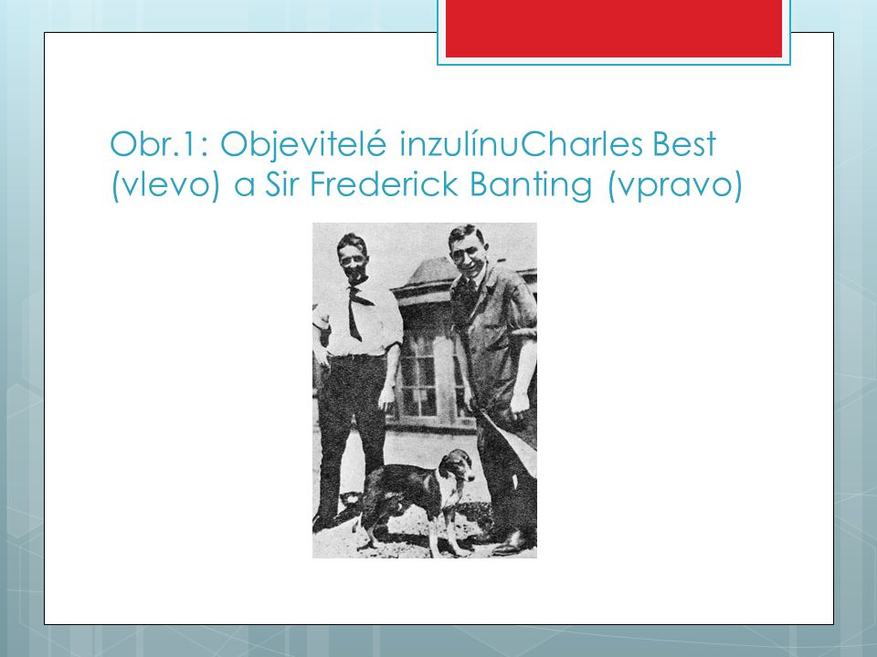 Obr.1: Objevitelé inzulínuCharles Best (vlevo) a Sir Frederick Banting (vpravo)