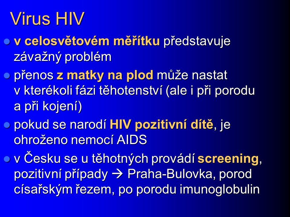 Virus HIV v celosvětovém měřítku představuje závažný problém