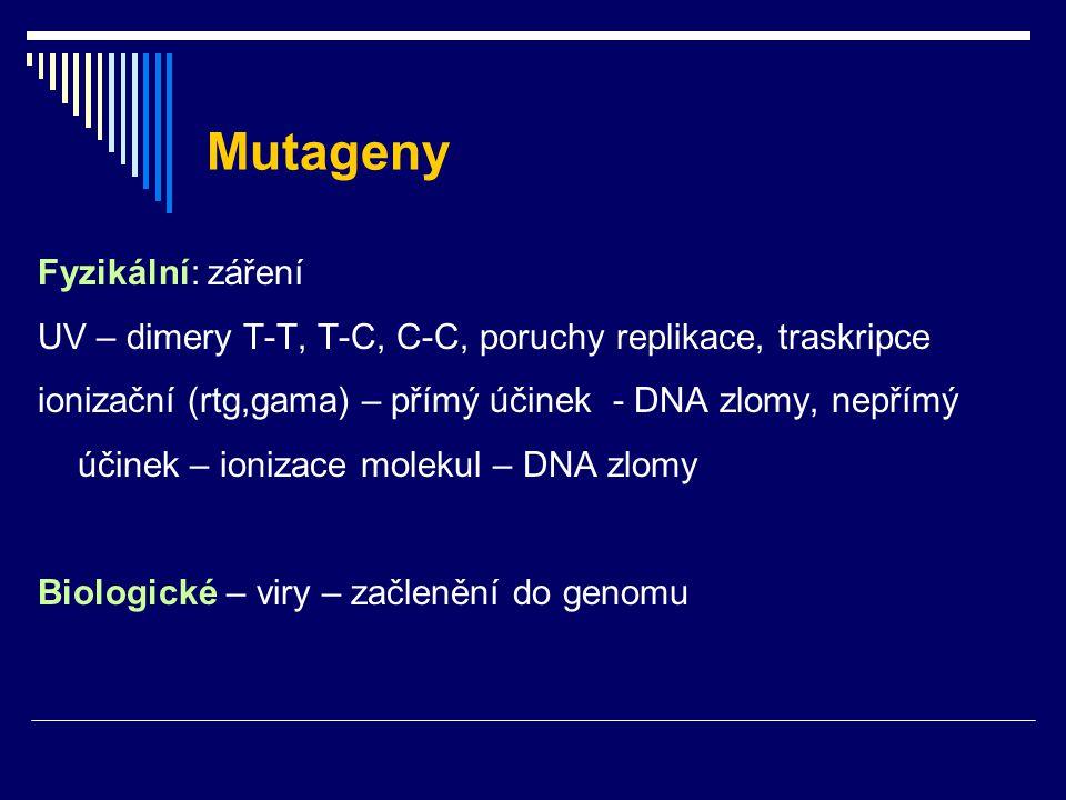 Mutageny Fyzikální: záření