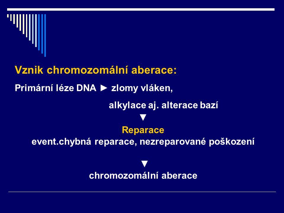 event.chybná reparace, nezreparované poškození chromozomální aberace